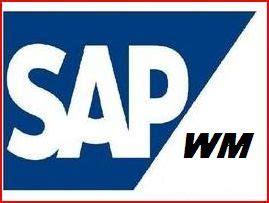 SAP Consultant Resume Sample Three Consultant Resume